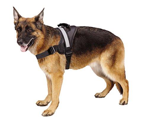 Under $25 Sale! – EXPAWLORER Big Dog Harness – Soft Reflective No Pull Black Size L 26-36 inch