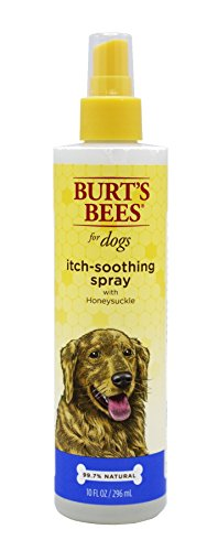 Best of – Burt's Bees For Dogs Itch Soothing Spray with Honeysuckle | Best Anti-Itch Spray For All Dogs And Puppies With Itchy Skin – FREE SHIPPING