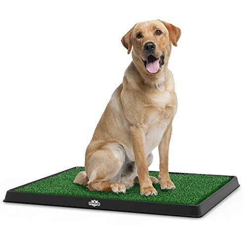 Best of – PETMAKER Artificial Grass Bathroom Mat for Puppies and Small Pets- Portable Potty Trainer for Indoor and Outdoor Use by Puppy Essentials, 20″ x 25″ – FREE SHIPPING