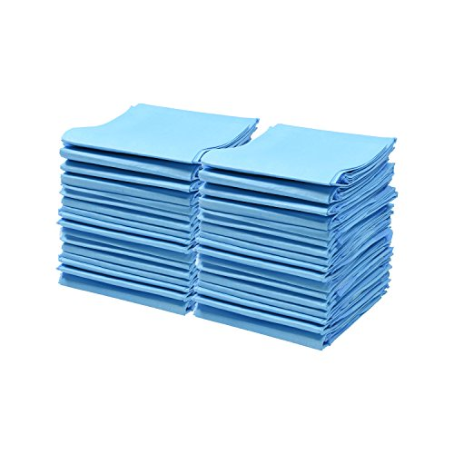 Best of – A World Of Deals Disposable Blue Underpad 23 X 36, 150/Case – FREE SHIPPING