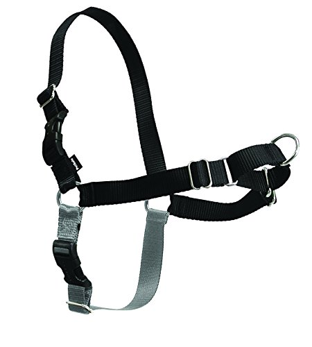 Under $25 Sale! – PetSafe Easy Walk Harness,  Medium/Large, BLACK/SILVER for Dogs