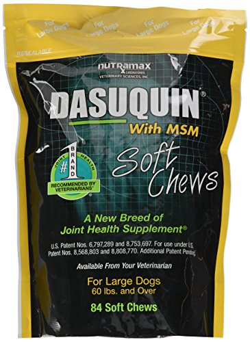 Effective – Nutramax Dasuquin with MSM Soft Chews, Large Dog, 84 Count – FREE SHIPPING