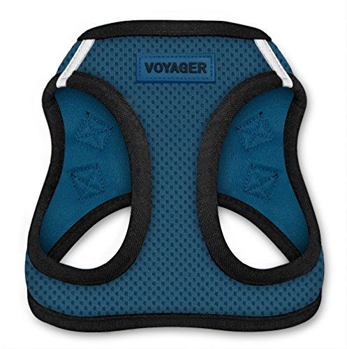 Under $25 Sale! – Voyager All Weather No Pull Step-in Mesh Dog Harness with Padded Vest, Best Pet Supplies, Medium, Blue Base