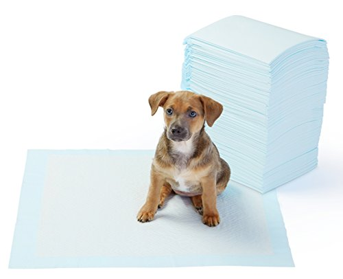 Best of – AmazonBasics Pet Training and Puppy Pads, Regular – 100 Count – FREE SHIPPING