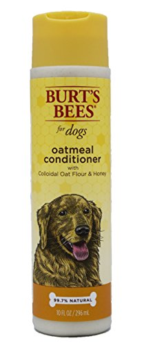 Best of – Burt's Bees for Dogs Oatmeal Dog Conditioner with Colloidal Oat Flour and Honey | Best Oatmeal Conditioner For All Dog's With Itchy Skin – FREE SHIPPING