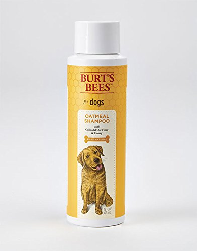 Best of – Burt's Bees for Dogs All-Natural Oatmeal Shampoo with Colloidal Oat Flour and Honey | Best Oatmeal Shampoo For All Dogs And Puppies With Itchy Skin – FREE SHIPPING