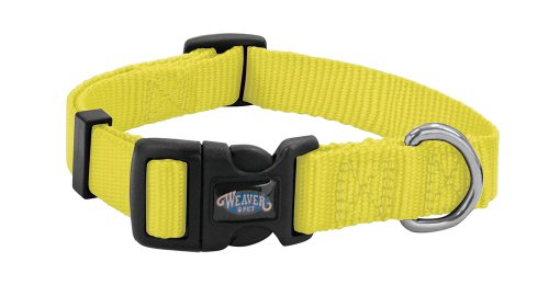 Best of – Weaver Leather Prism Snap-N-Go Collar, Small, Orbit Yellow – FREE SHIPPING