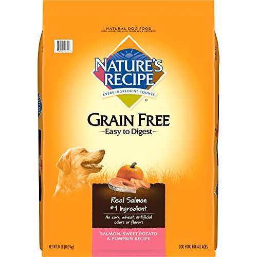Best of – Nature's Recipe Grain Free Easy to Digest Dry Dog Food, Salmon, Sweet Potato & Pumpkin Recipe, 24-Pound – FREE SHIPPPING