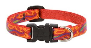 LupinePet Originals 1/2″ Go Go Gecko 10-16″ Adjustable Collar for Small Dogs