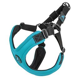 Gooby Escape Free Sport Dog Harness for Dogs that Pulls and Escapes, Turquoise, Large