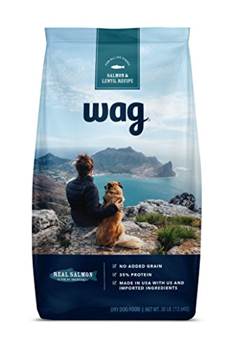 Best of – WAG Dry Dog Food, No Added Grain, Salmon & Lentil Recipe, 30 lb. Bag – FREE SHIPPPING