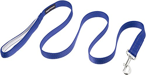 Best of – AmazonBasics Padded Handle Dog Leash – 4-Foot, Blue – FREE SHIPPING