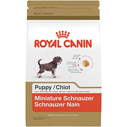 Best of – ROYAL CANIN BREED HEALTH NUTRITION Miniature Schnauzer Puppy dry dog food, 2.5-Pound – FREE SHIPPPING