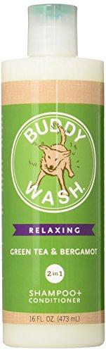 Best of – Cloud Star Buddy Wash Dog Shampoo and Conditioner, 16oz, Green Tea & Bergamot – FREE SHIPPING