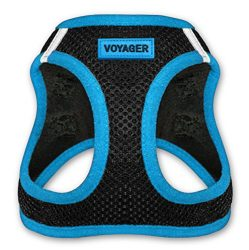 Voyager All Weather No Pull Step-in Mesh Dog Harness with Padded Vest, Best Pet Supplies, Medium, Blue