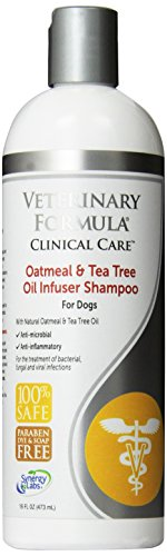 SynergyLabs Veterinary Formula Clinical Care Oatmeal & Tea Tree Oil Infuser Shampoo for Dogs; 16 fl. oz.