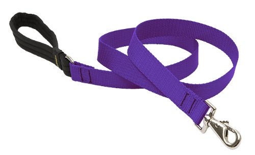 LupinePet Basics 1″ Purple 6-foot Padded Handle Leash for Medium and Larger Dogs