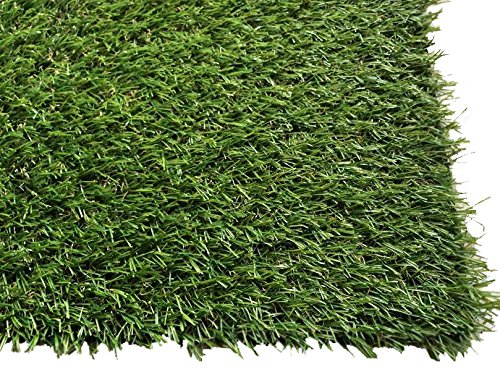 PZG 1-inch Artificial Grass Patch w/ Drainage Holes & Rubber Backing | 4-Tone Realistic Synthetic Grass Mat | Heavy & Soft Pet Turf | Lead-Free Fake Grass for Dogs or Outdoor Decor | Size: 40″ x 24″