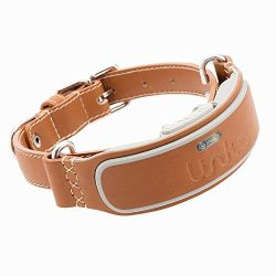 Link AKC Smart Dog Collar – GPS Location Tracker, Activity Monitor, and More, Leather Large (KITTN03)