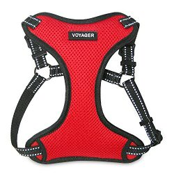 Best Pet Supplies Voyager – Fully Adjustable Step-In Mesh Harness with Reflective 3M Piping (Red, Large)