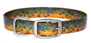 Dublin Dog Koa Collection Trout Series 17 by 21.5-Inch Dog Collar, Large, Brook Trout