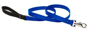 LupinePet Basics 3/4″ Blue 6-foot Padded Handle Leash for Medium and Larger Dogs