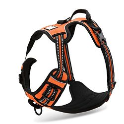 Chai's Choice Pet Products 13″-17″ Best Front Range No-Pull Dog Harness, X-Small, Orange