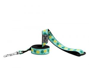 RC Pet Products 1″ x 6′ Dog Leash, Pineapple Parade