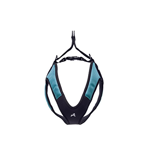 Gooby Escape Proof [Escape Free] Easy Fit Dog Harness for Dogs that likes to escape their harnesses, Turquoise, Small