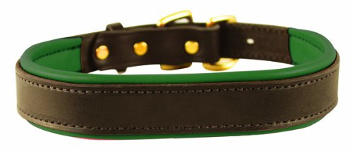 Perri's Padded Leather Dog Collar, Havana/Hunter Green, Medium/1″ x 21″ – fitting dogs with 12 – 16″ necks