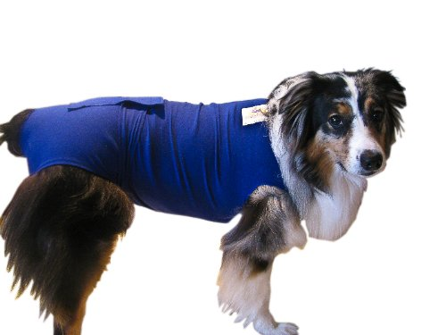 Surgi Snuggly E Collar Alternative, Created By A Veterinarian Specifically to Fit Your Dog, Medium Long