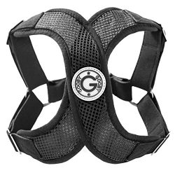 Gooby Choke Free Perfect Fit X Harness for Small Dogs, Large, Black