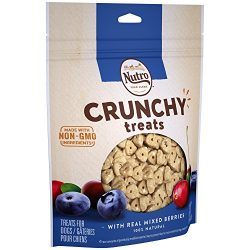 Nutro Crunchy Dog Treats Mixed Berries 16 oz. Bag