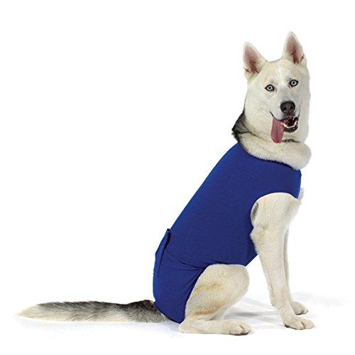 KVP Recova Shirt E-Collar Alternative Pet Recovery Collar, Small