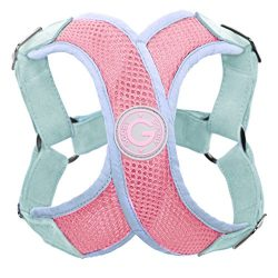 Gooby Choke Free Perfect Fit X Harness for Small Dogs, Medium,Pink/Blue