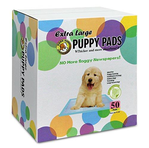 Best Pet Supplies 50 Piece 36 x 28″ Puppy Training Pad, X-Large