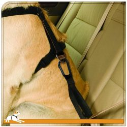 Kurgo Dog Seat Belt Pet Safety Tether with Carabiner, Use with Dog Harness, Black/Grey