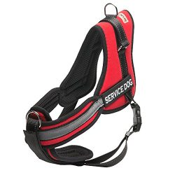 Head Tilt HT61011R-M Service Dog Harness, Medium, Red