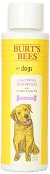 Burt's Bees for Dogs Calming Shampoo with Lavender and Green Tea | Best Calming Shampoo For All Dogs And Puppies With Sensitive Skin