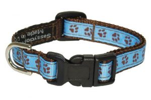 Sassy Dog Wear 6-12-Inch Blue/Brown Puppy Paws Dog Collar, X-Small