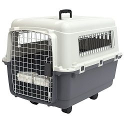 SportPet Designs Plastic Kennels – Rolling Plastic Airline Approved Wire Door Travel Dog Crate, Medium