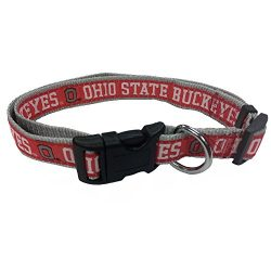 COLLEGE OHIO STATE BUCKEYES Dog Collar, Large