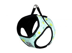RC Pet Products Cirque Soft Walking Step-In Dog Harness, Pineapple Parade, Medium