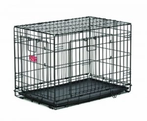MidWest Homes for Pets Life Stages ACE Double Door Dog Crate, 42-Inch