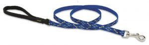 LupinePet Originals 1/2″ Dapper Dog 6-foot Padded Handle Leash for Small Pets