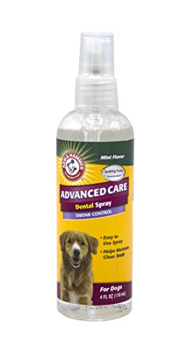 Arm & Hammer Advanced Care Tartar Control Dental Spray for Dogs in Mint Flavor, 4 Ounces
