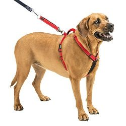 Sporn Dog Harness – Non-Pull No-Choke Humane Adjustable Reflective Dog Training Harness, Non Pulling Pet Harness, Easy Step-in Adjustable Harness for Control, Red, Large by
