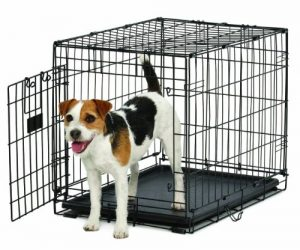 MidWest Homes for Pets Life Stages ACE Dog Crate, 24-Inch