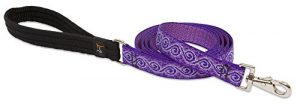 LupinePet Originals 1″ Jelly Roll 6-foot Padded Handle Leash for Medium and Larger Dogs