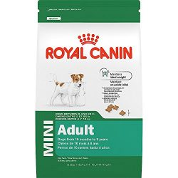Royal Canin SIZE HEALTH NUTRITION MINI Adult dry dog food, 14-Pound